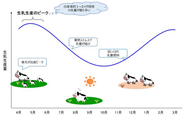 生乳生産量と時期の関係